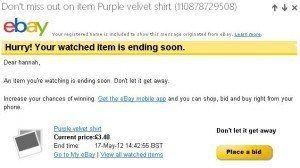 Exemple Newsletter ebay